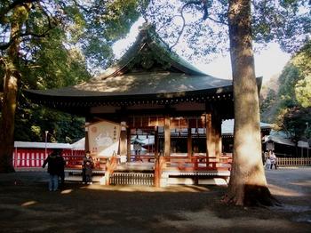 20100109(05)氷川神社5.JPG