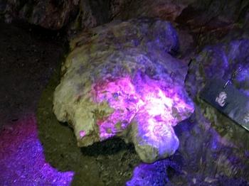 20100719龍泉洞(12)亀岩.JPG