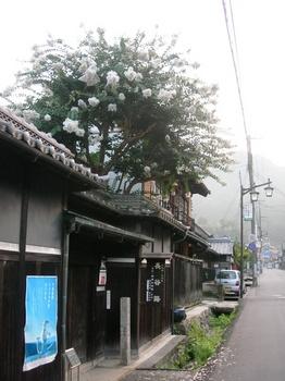 20100815長谷寺(01)参道.JPG