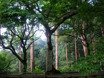 20100815長谷寺(13)三重塔跡.JPG