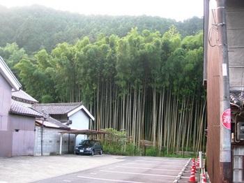 20100815長谷寺(19)与喜山と竹林.JPG