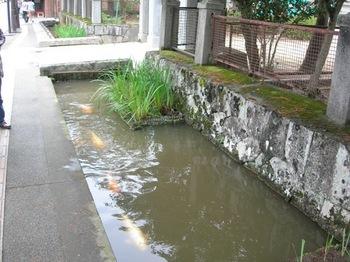 20100923(24)津和野の町並み.JPG