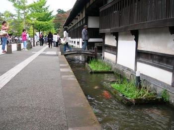 20100923(47)水路と錦鯉.JPG
