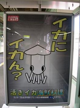 20100923(81)イカにイカん?.JPG