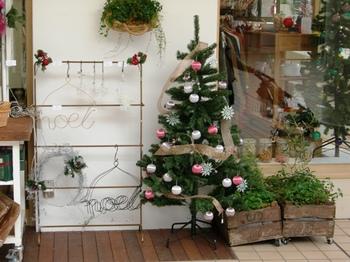 20101107たまプラーザ(7)クリスマスツリー.JPG