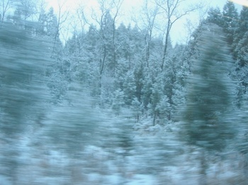 20101224(03)雪景色.JPG