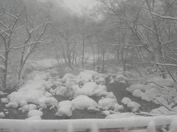 20101224(07)沿道風景.JPG