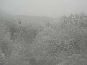 20101225(02)仙山線1.JPG