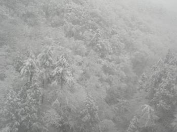 20101225(03)仙山線2.JPG