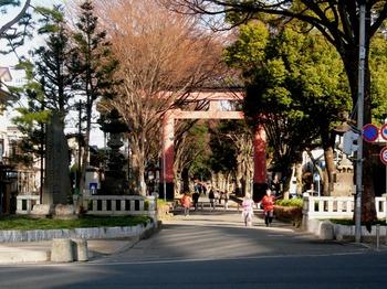 20110109(01)氷川神社1.JPG