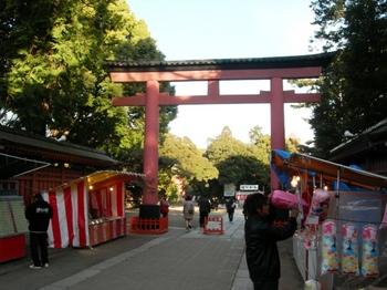 20110109(03)氷川神社3.JPG