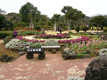 20110131伊豆(35)爪木崎花園.JPG
