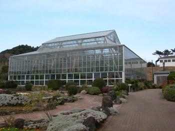20110131伊豆(36)爪木崎花園の温室.JPG