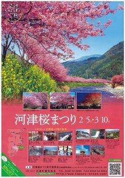 20110131伊豆(62)河津桜まつりパンフ表.jpg