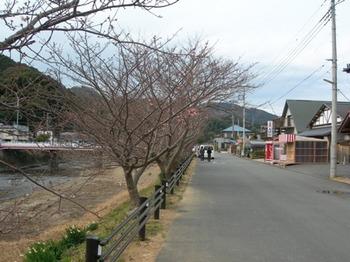 20110131伊豆(70).JPG