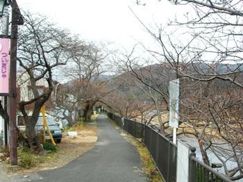 20110131伊豆(76).JPG