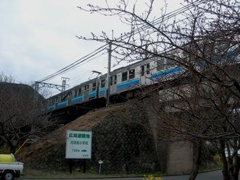 20110131伊豆(87).JPG
