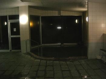 20110131伊豆(94)温泉1.JPG
