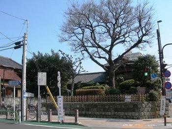 20110227(04)志村一里塚.JPG