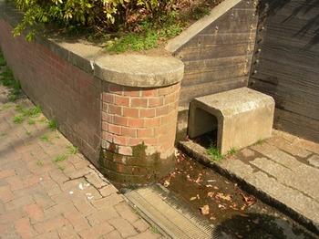 20110227(19)見次公園の湧き水.jpg