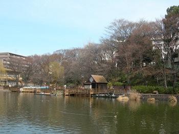 20110227(27)見次公園.jpg
