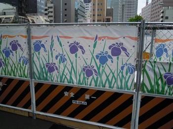20110707(13)工事フェンスのアヤメ.jpg