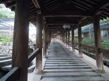 20110811(04)長谷寺下の登廊.jpg
