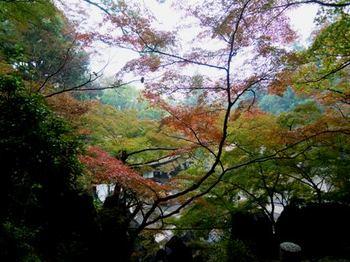 20111030石山寺速報.JPG