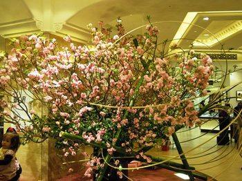 20120325(01)タカシマヤの桜.jpg