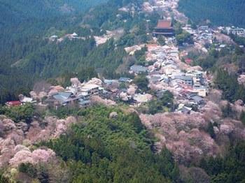 20120415(04)花矢倉から.jpg