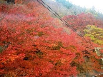 20121124(04)ロープウェイより.jpg