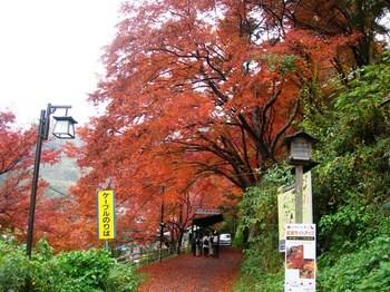 吉野詣(08)ケーブル乗り場へ.JPG