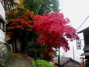 吉野詣(33)町並みの中の紅葉.JPG