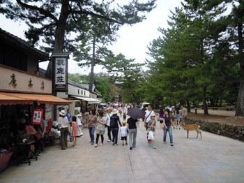 奈良東大寺01.JPG