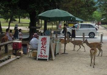 奈良興福寺09.jpg