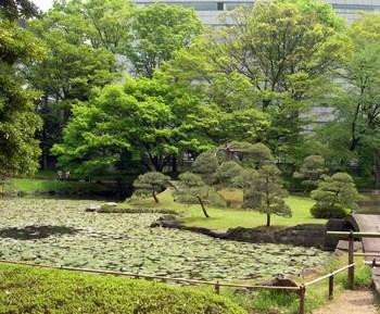 小石川後楽園内庭.jpg