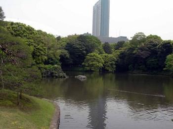 小石川後楽園大泉水(3).jpg