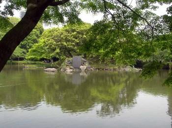 小石川後楽園大泉水(5).jpg