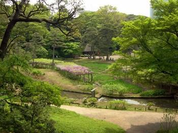 小石川後楽園愛宕坂からみた藤棚.jpg
