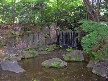 小石川後楽園白糸の滝.jpg