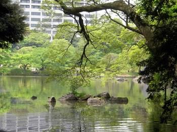 小石川後楽園竹生島.jpg