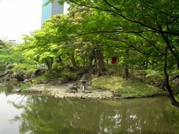 小石川後楽園蓬莱島(1).jpg