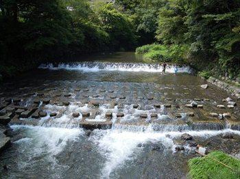 比叡から京へ09高野川.jpg