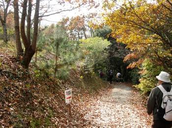 淡路(15)淡路島公園内の山道.JPG