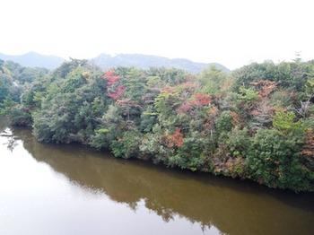 淡路がええで18昭和池.jpg