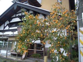 石山寺17.JPG